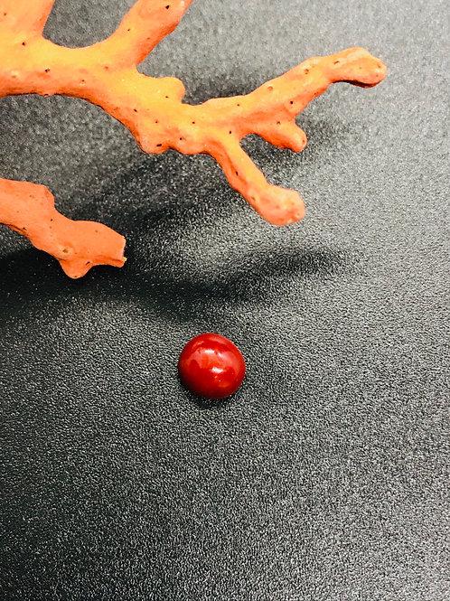 Mini Cabochon Corail Rouge véritable