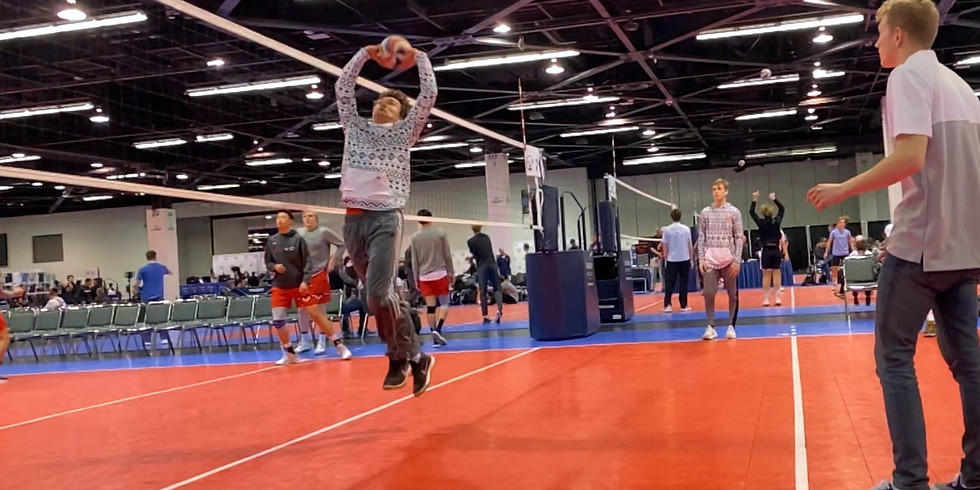Setters (All Ages)