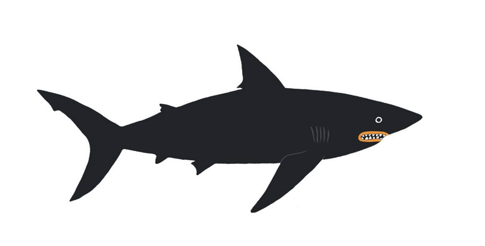 Tattly dark waters shark temporary tattoos