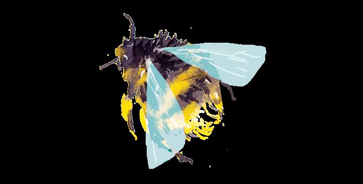 Tattly Bumblebee temporary tattoo