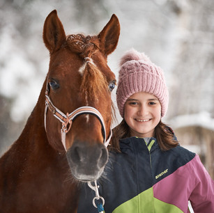 Horses WS 11.jpg
