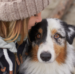 Hundefotografie 29.jpg