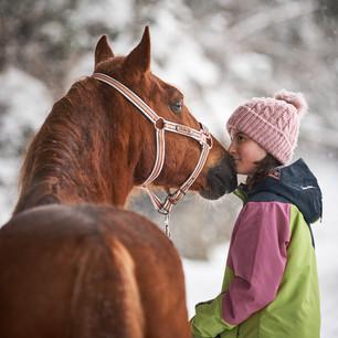 Horses WS 10.jpg