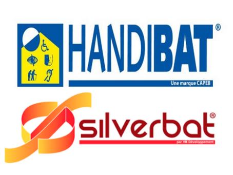 Qu'est-ce que la marque Handibat et Silverbat ?