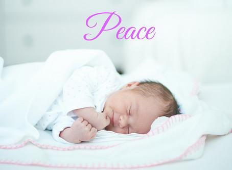 #1 för fertiliteten - hitta lugnet