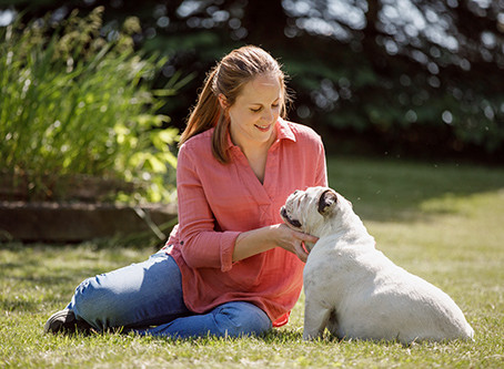 Longer Life For Pets In Seven Steps
