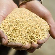 Soyabean Meal Aland.jpg
