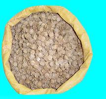 Sugar Cane Pellet (Begass).jpg