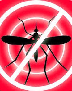 Cortina PVC en TiraAnti-Insectos