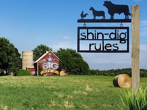 Shin-dig_rules.jpg