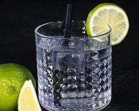gin_tonic_edited.jpg