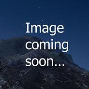 Screen Shot 2020-05-07 at 9.25.01 PM.png