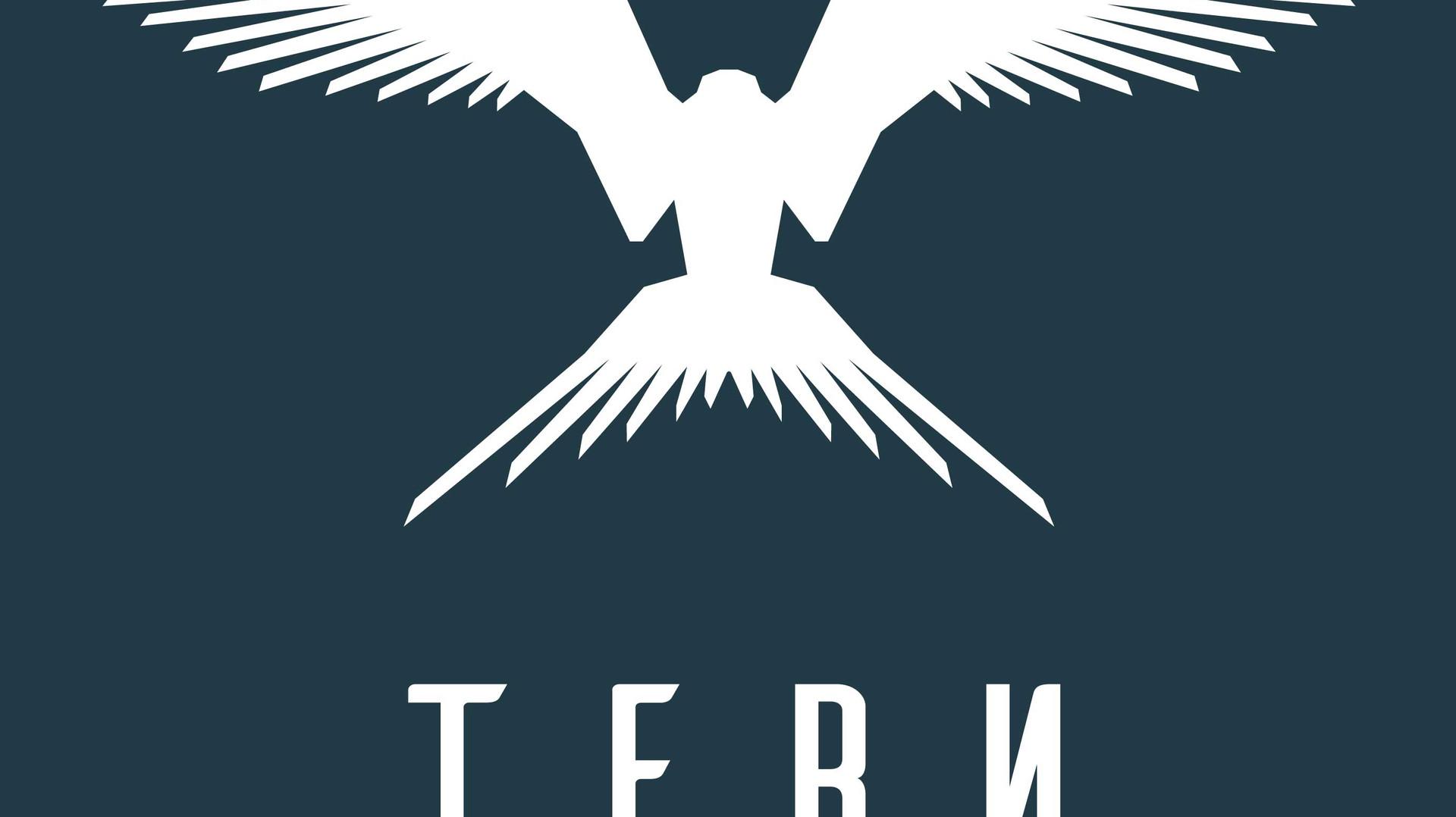 T E R N  Branding