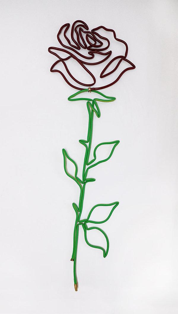 Rose 4 home.jpg