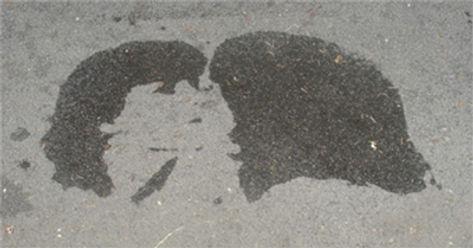 Narcisse Mirror kiss 1a.jpg