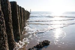 walk_into_the_sea