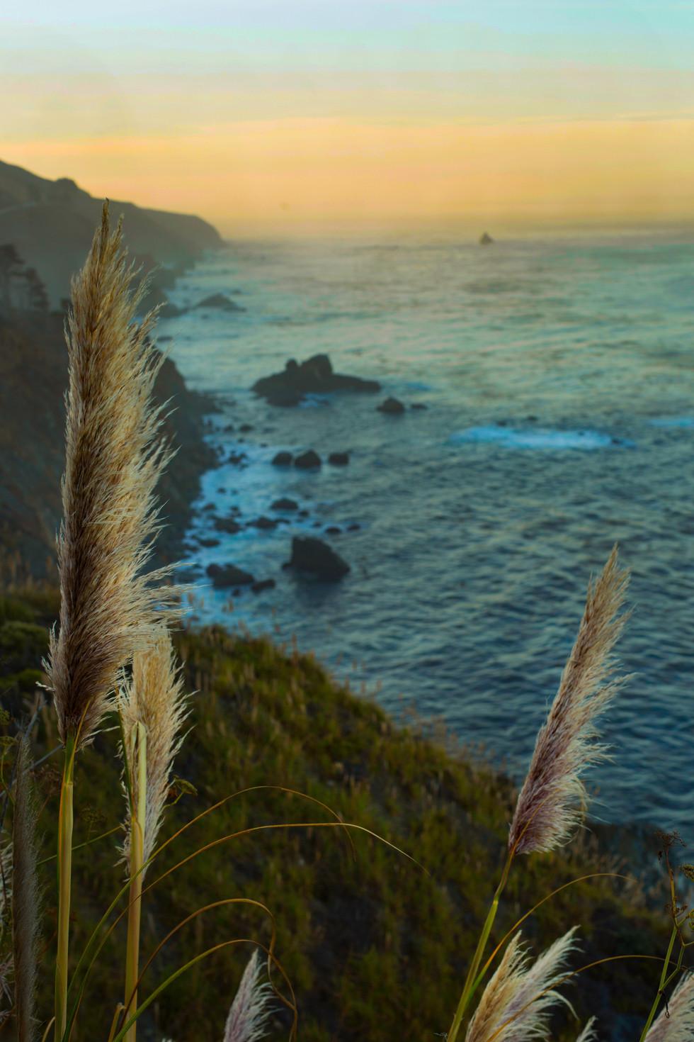 2-big_sur_landscapes_britt_arnett_creati