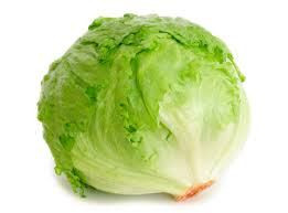 just plain lettuce