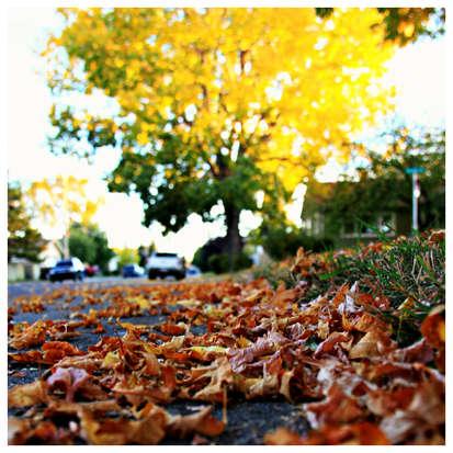 2012 09 28_003 edit.jpg