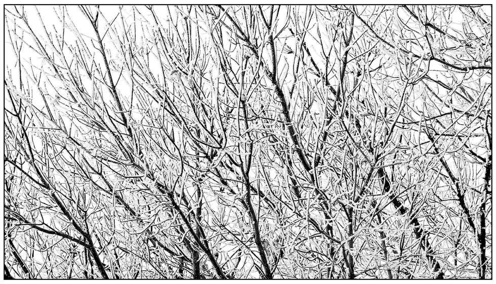 2012-11-01 006 edit1.jpg