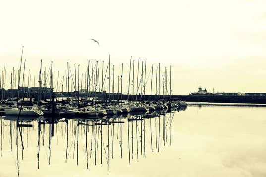 Monotone Marina