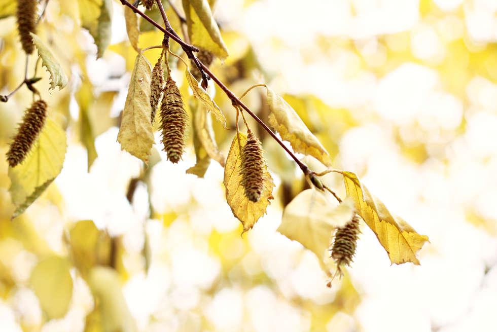 2012-10-15 011 edit.jpg