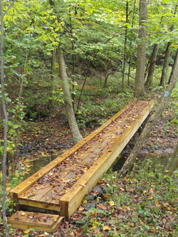 Wood Walk Way-North Country Trail