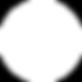 Logo PERFER 2020 BLANCO.png