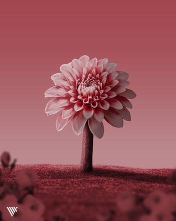 VLIX_Flowertree.jpg