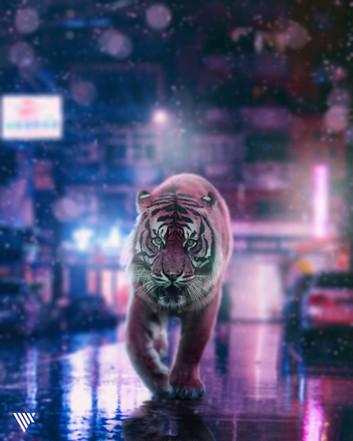 VLIX_Tiger.jpg