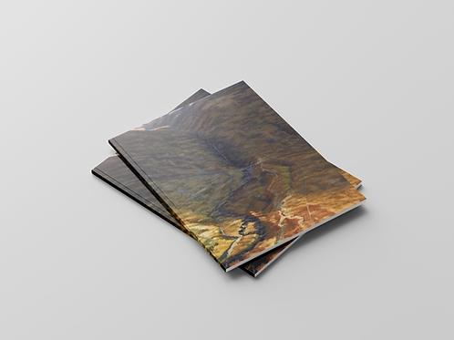Julian Cooper: Upstream - Paintings (2017)