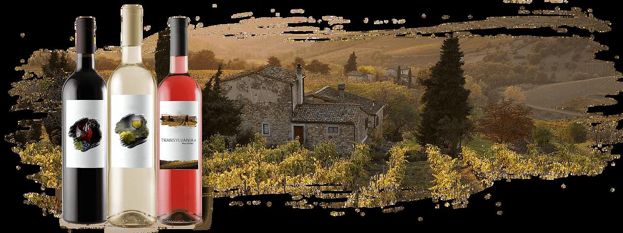 Etichete Vin Transylvania Wine Tours 2.p