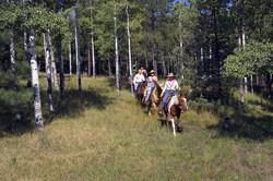 Horseback-Riding-019-800x600.jpg