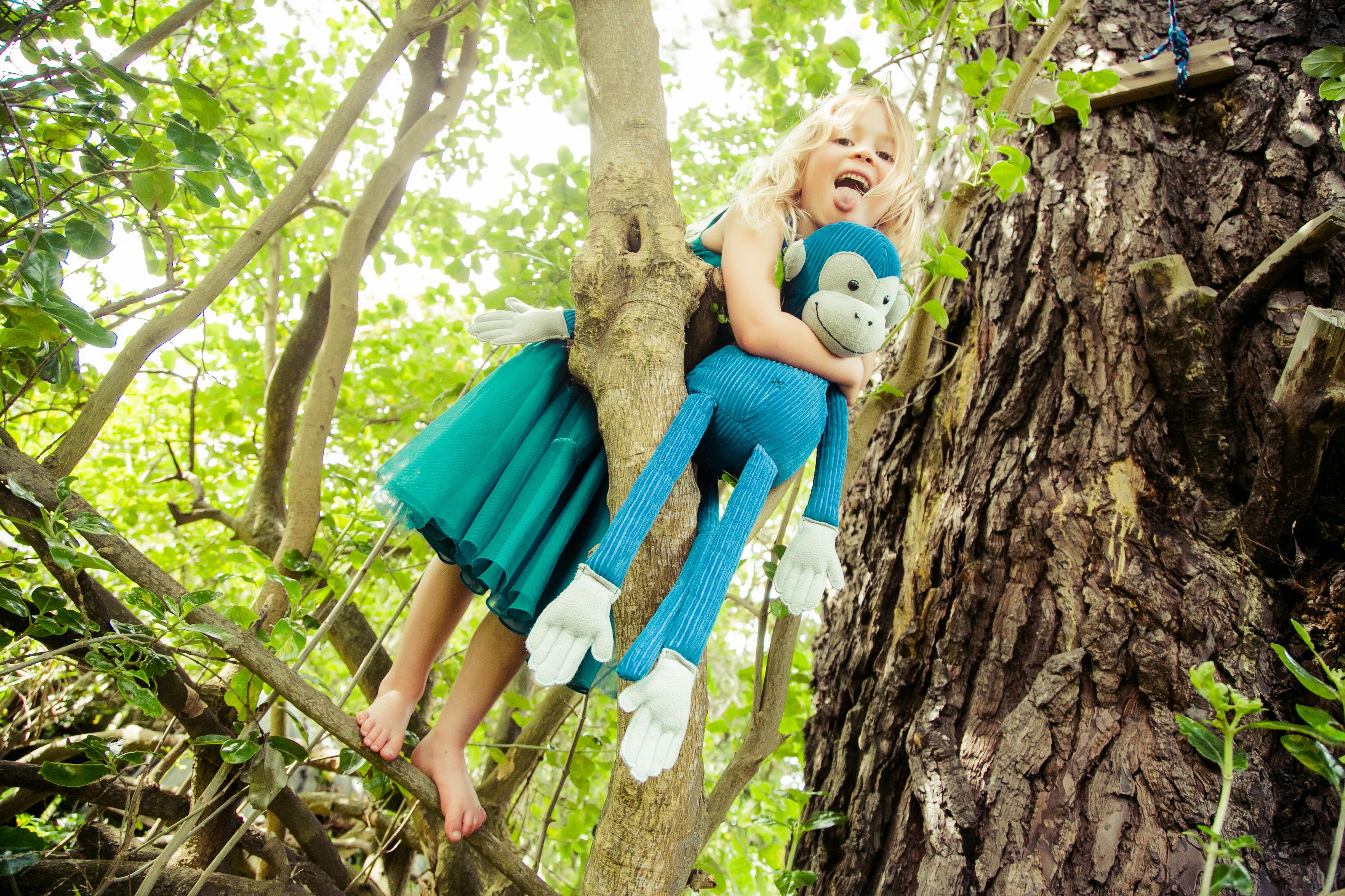 Two monkeys in a tree!