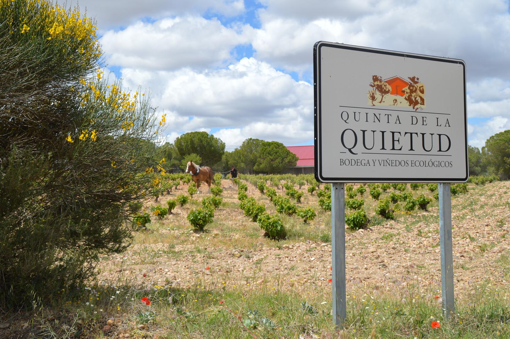 Quinta de la Quietud