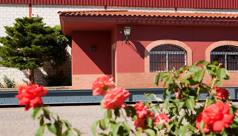 Exterior Bodega Carlos Plaza