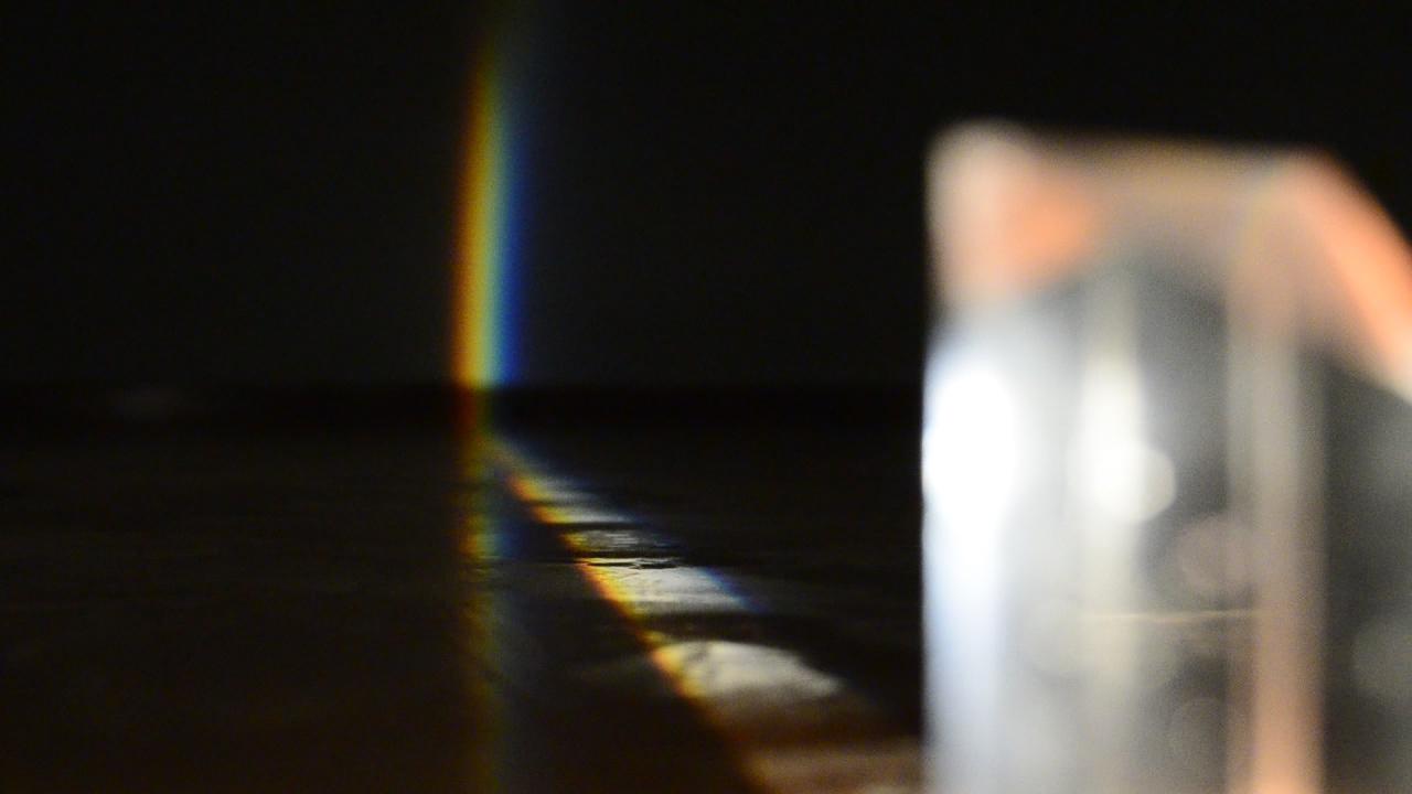 Ogni cosa è illuminata#3