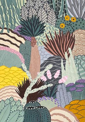 Desert Plants - Sara B Meadows.jpg