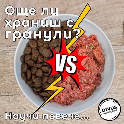 Гранули VS БАРФ (BARF)   Коя е най-подходящата диета за нашите кучета?