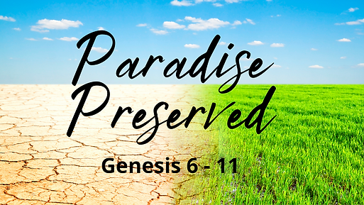 paradise preserved.png