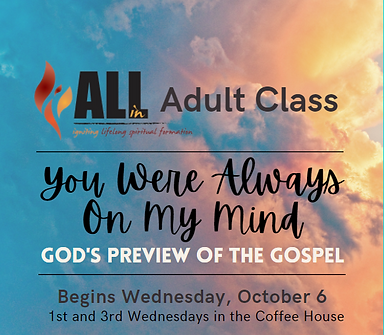 All In Adult class 2021.PNG