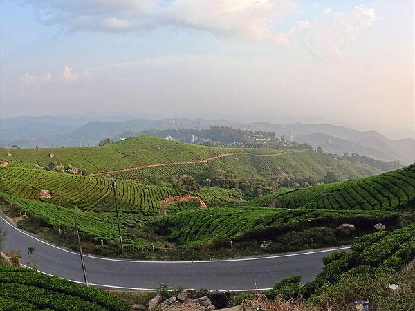 Munnar Route View.jpg
