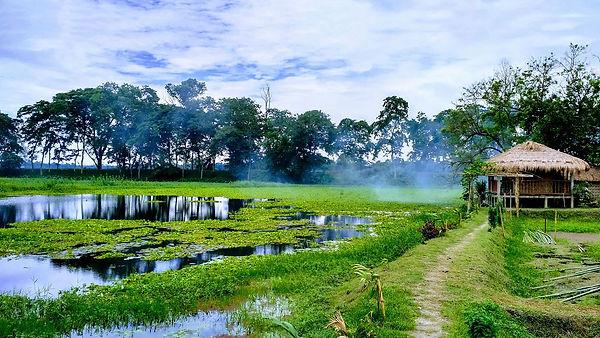 Majuli Island.jpg
