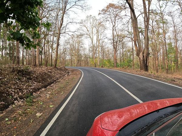 Road to Thirunelli.JPG
