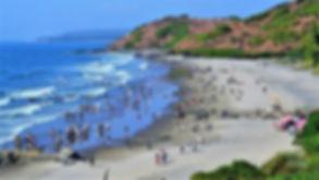 Chapora Beach.jpg