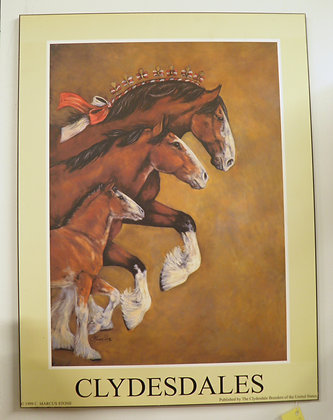 Clydesdale Laminate