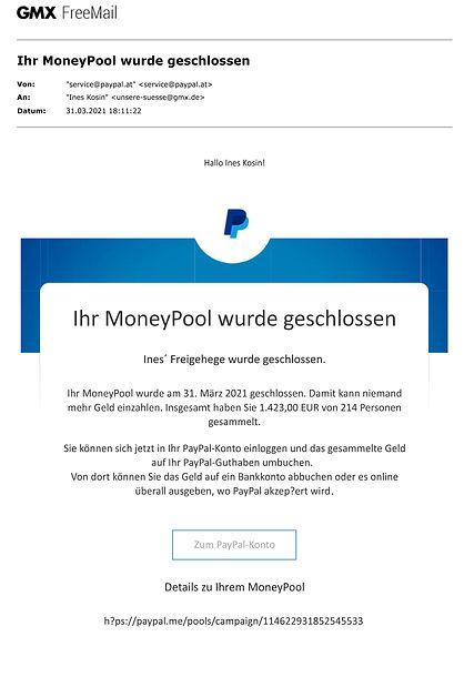 Money Pool für Schildkröten