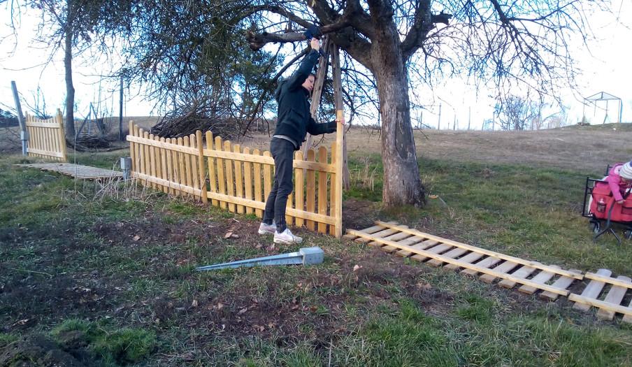 Der Zaun wandert an seinen neuen Platz