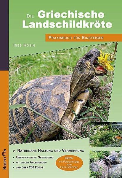 Die Griechische Landschildkröte Ines Kosin