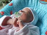 Wippe 17.10.2008.JPG